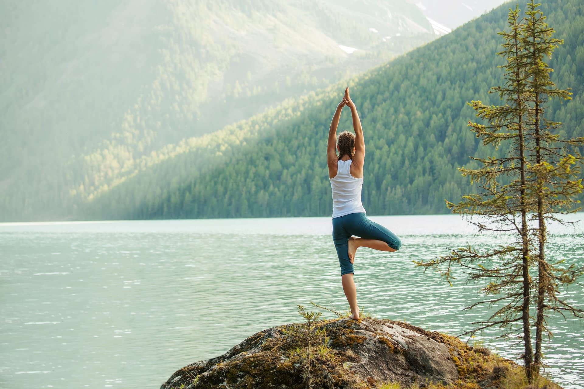 The Yoga of Revenue Optimization & Marketing Collaboration